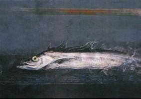 魚 (1983 油彩 カンヴァス 10M)